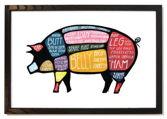 alumni magazines erin peterson parts of pig
